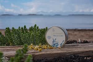 Saaren Taika kamomilla sheavoide ekseema ihottuma sheavoide atooppinen