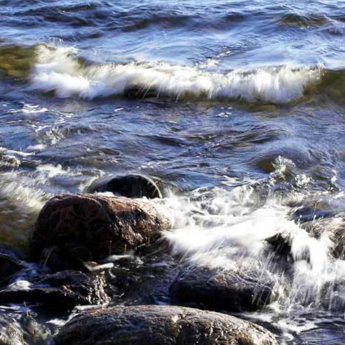 saaren taika särkisalo saaristo luonto (3)